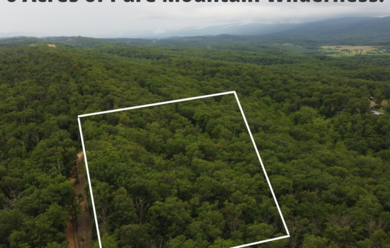 5.8 Acres of Unrestricted Mountain Wilderness!